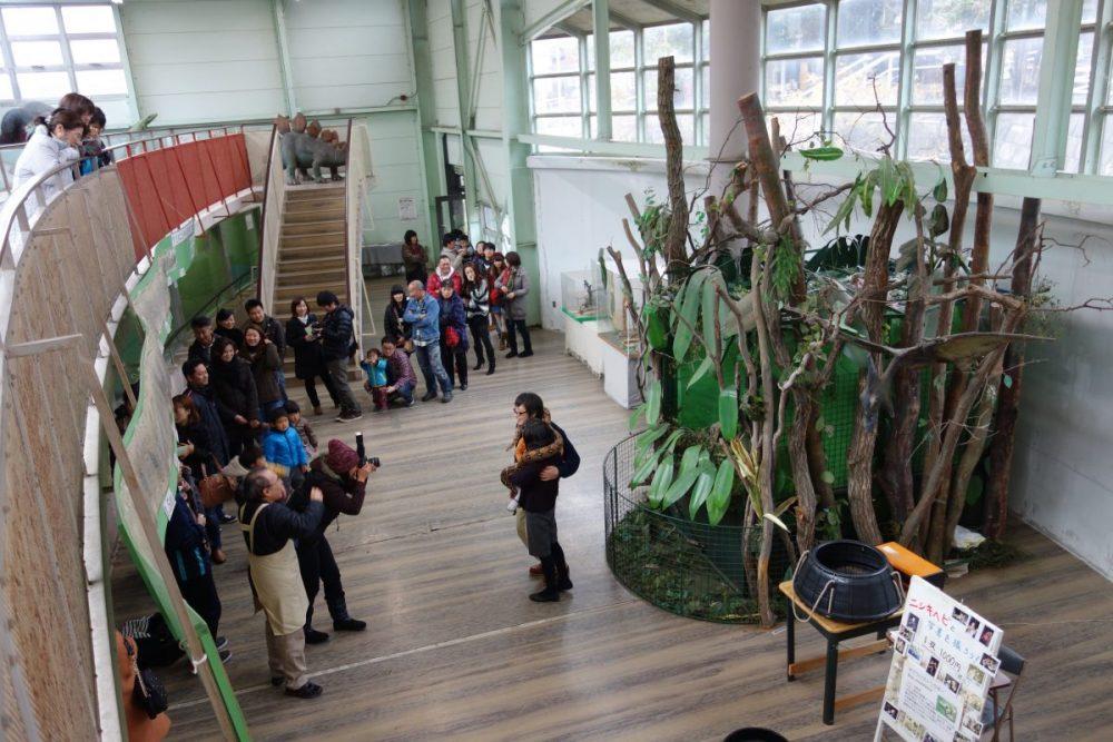 ジャパンスネークセンター@群馬県藪塚〜ニシキヘビと写真撮影