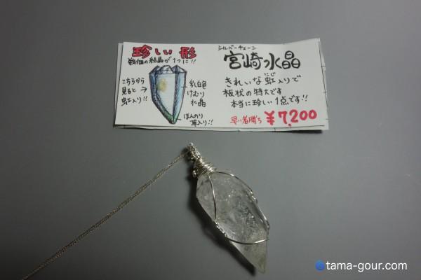 DSC05730