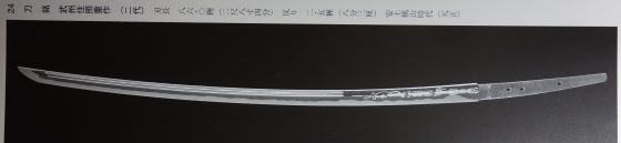 dsc00733-2