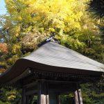レストラン MISONO@あきる野市〜広徳寺の黄葉を見た後に